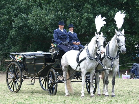 White Horse and Carriage The Ostler.jpg